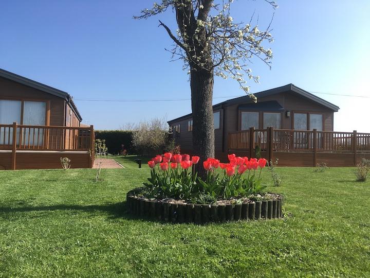 Spring time on Oakmere Lodge Park