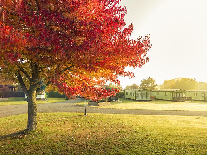 Experience the seasons in beautiful surroundings